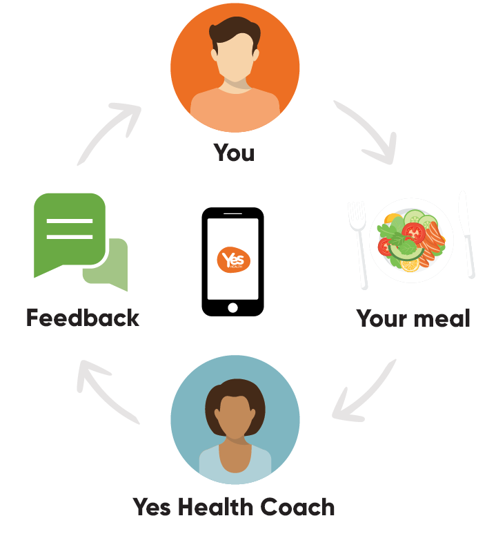 Yes Health member-coach flow circle